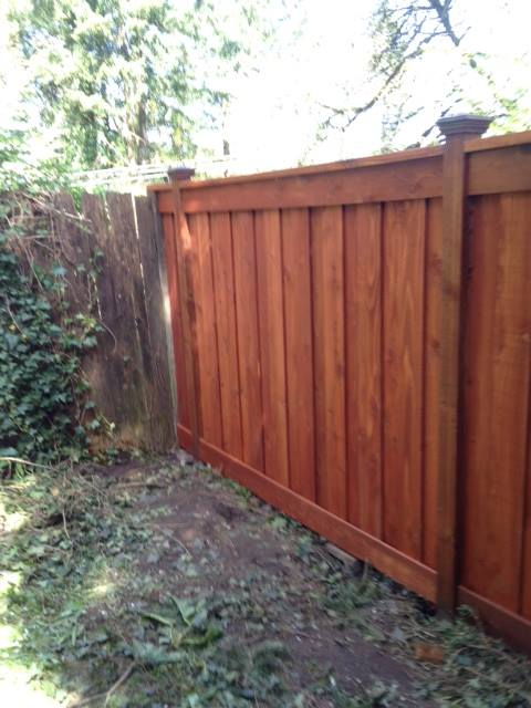 New Fence w/Stain