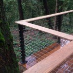 Cable Rail and Ironwood railing