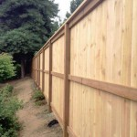 Back side of cedar fence