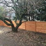 Custom Sideways Fence in PDX
